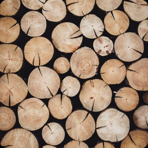 puut- paras materiaali kaikkeen sisäverhoukseen